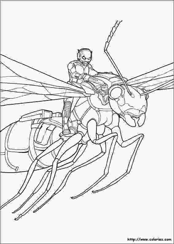 ant man coloring pages antman superheroes printable coloring pages 2