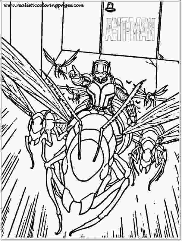 ant man coloring pages free ant man printable coloring sheet realistic coloring