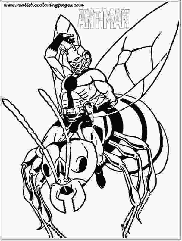 ant man coloring pages free printable ant man coloring pages realistic coloring
