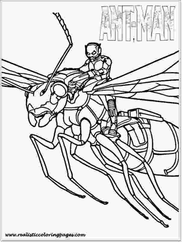 ant man coloring pages printable ant man coloring pages for toddler realistic