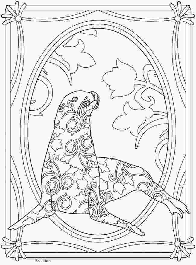 sea lion for coloring creative haven sealife sea lionwelcome to dover
