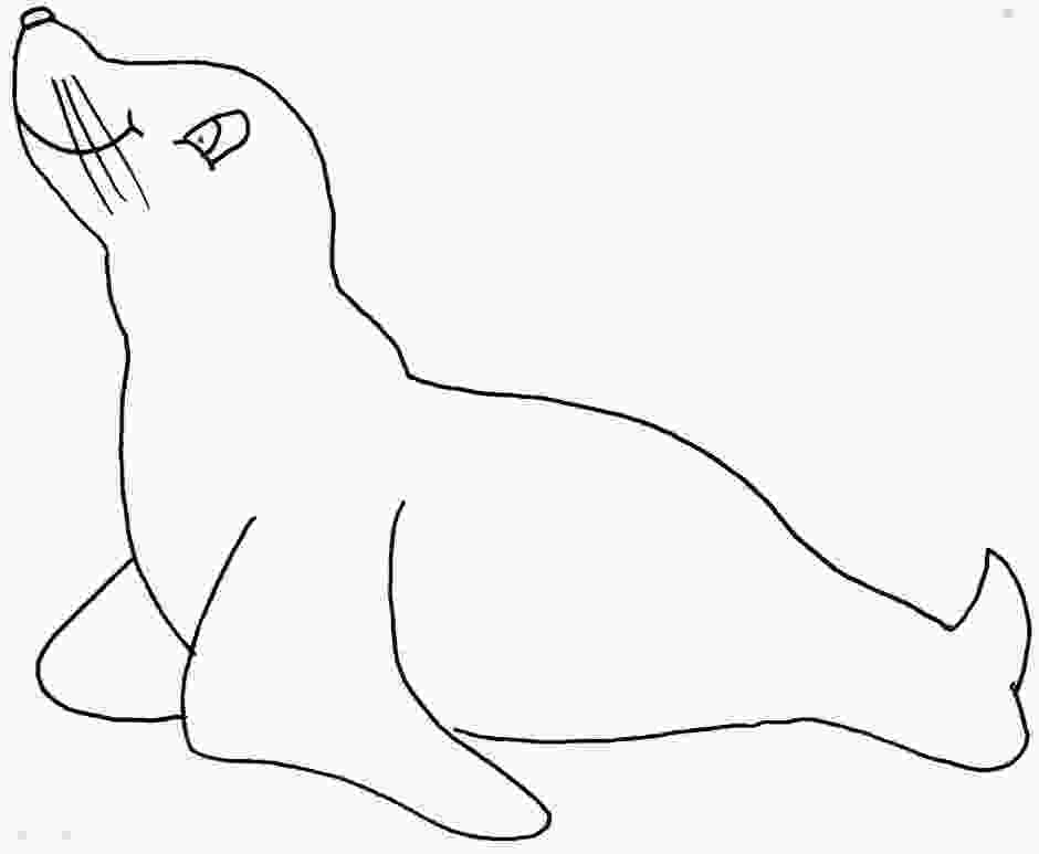 sea lion for coloring sea lion drawing at getdrawingscom free for personal
