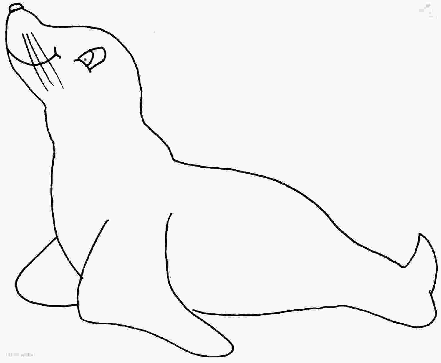 sea lion for coloring sealion coloring page