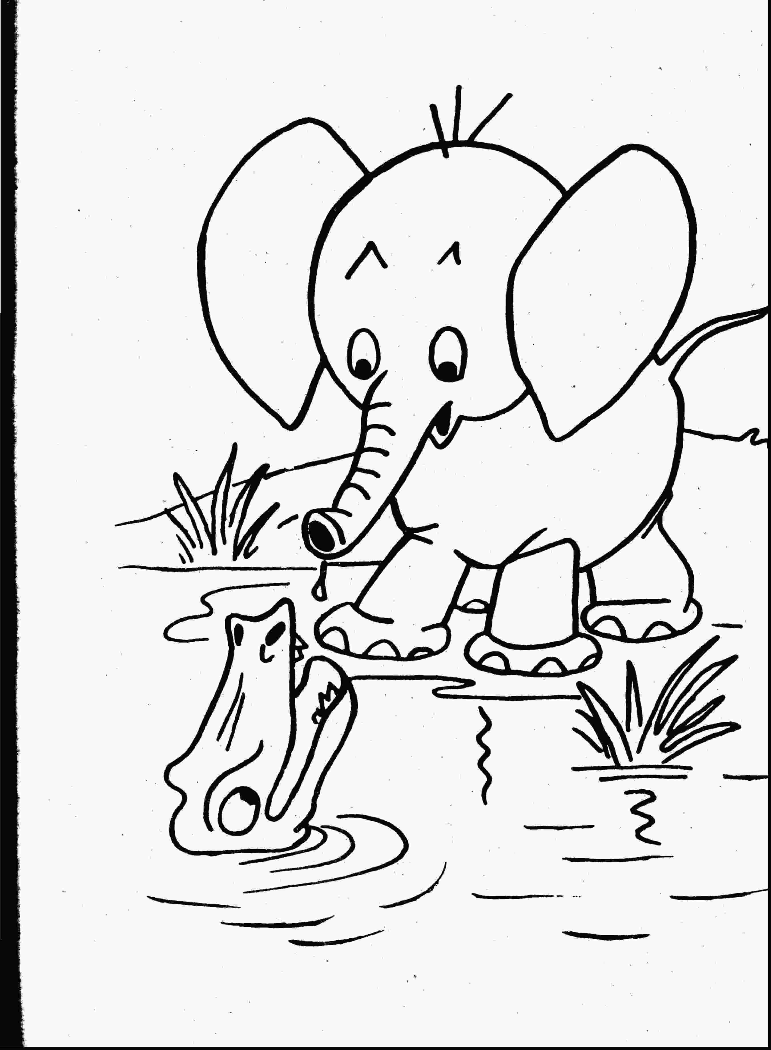 baby zoo animals coloring pages zoo animal coloring pages coloringsuitecom