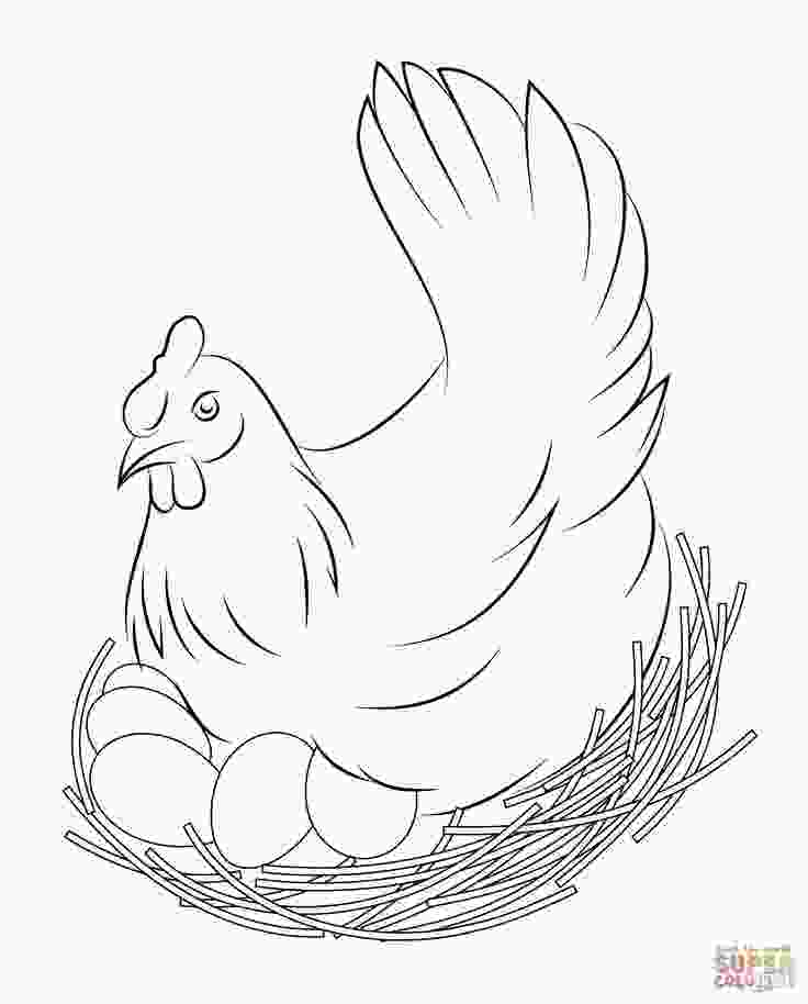 chicken coloring pictures chicken coloring pages free coloring pages coloring