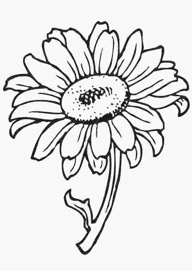 color pictures of flowers free printable flower coloring pages for kids best