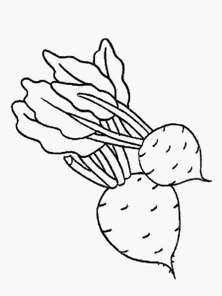 coloring images of vegetables beet coloring pages download and print beet coloring pages