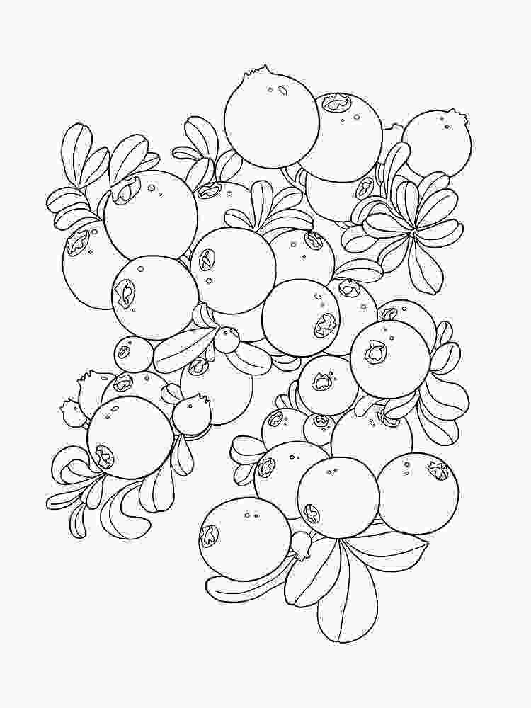 coloring pages blueberries coloring pages to download and print for free