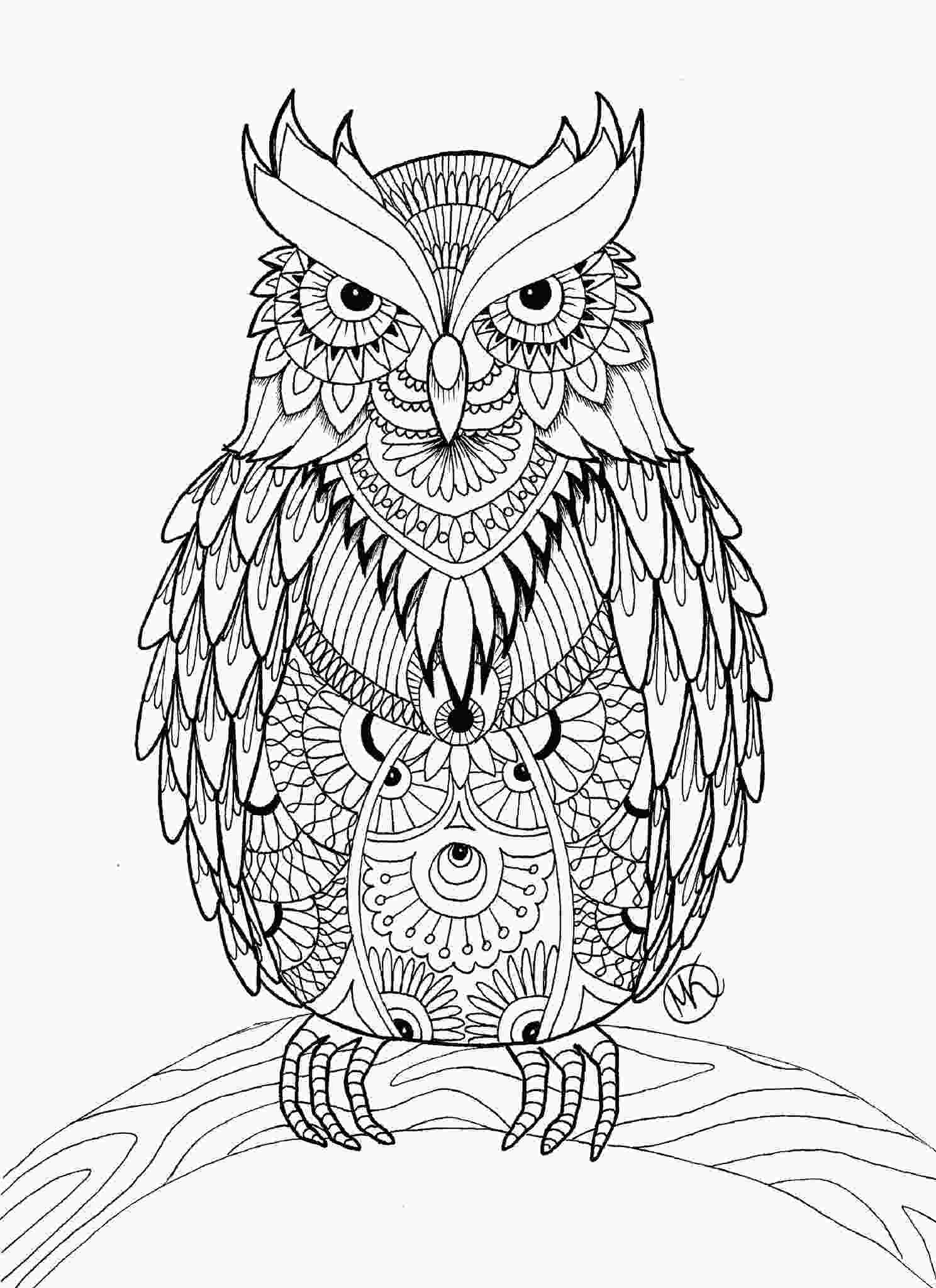 coloring pages owl owl coloring pages for adults free detailed owl coloring