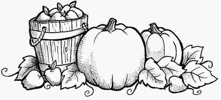 coloring pumpkin patch fall pumpkin coloring pictures cyberuse
