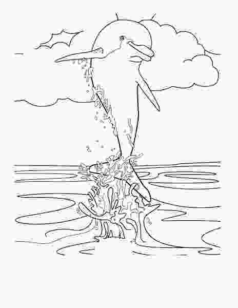 dolphin tale coloring sheets dolphin tale 2 coloring pages printable coloringsnet