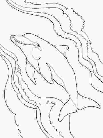 dolphin tale coloring sheets top 9 cute dolphin colouring pages for free printable