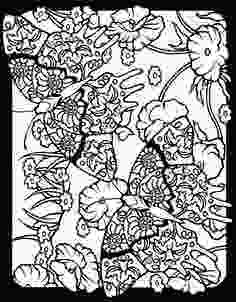 fancy butterfly coloring pages advanced coloring birds butterflies on pinterest dover