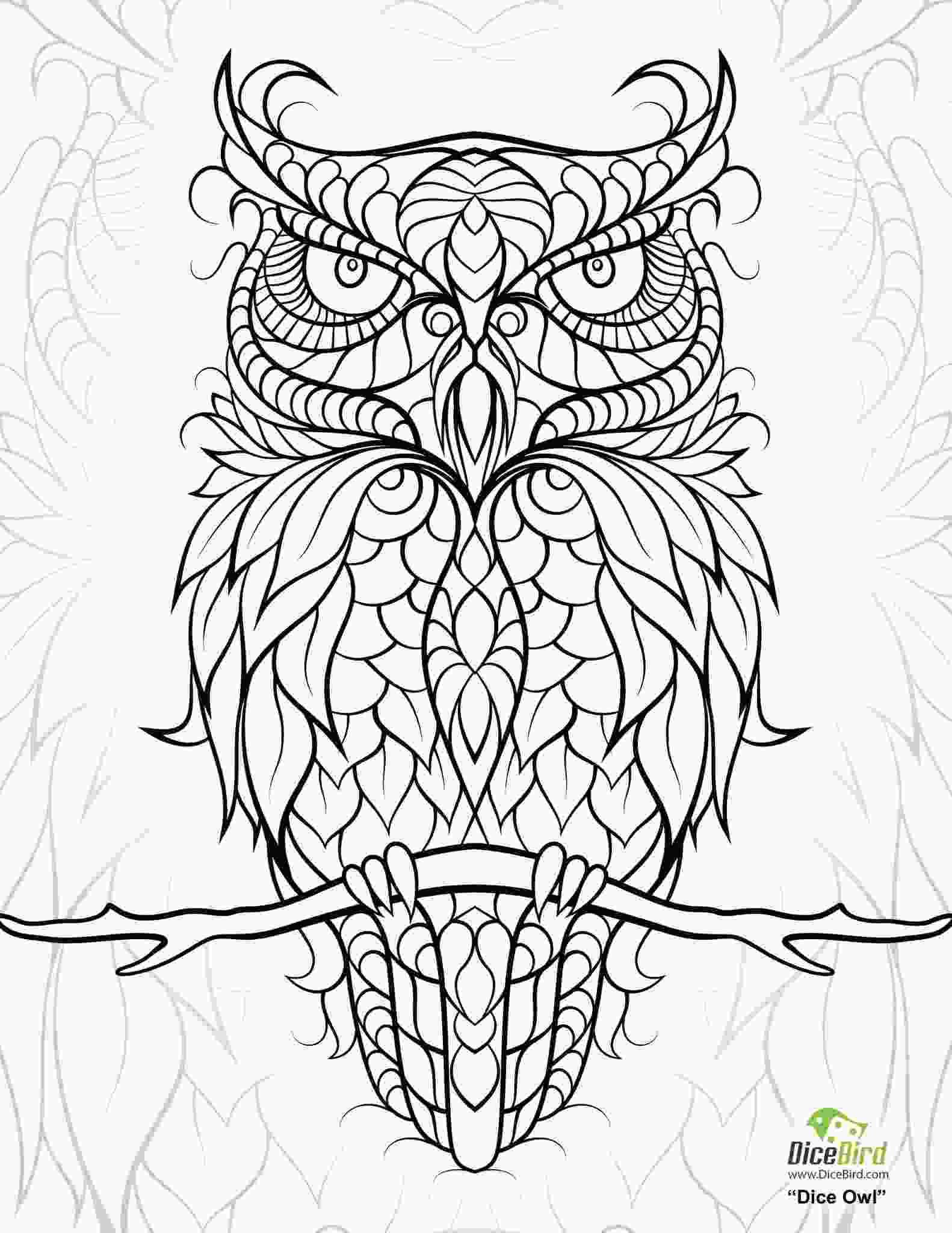 full page coloring pages diceowlfree printable adult coloring pages adult