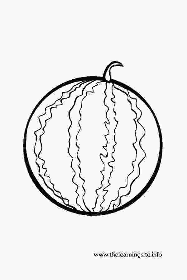 outline picture of watermelon the learning site