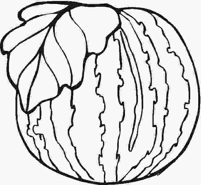 outline picture of watermelon watermelon coloring pages free printable coloring pages