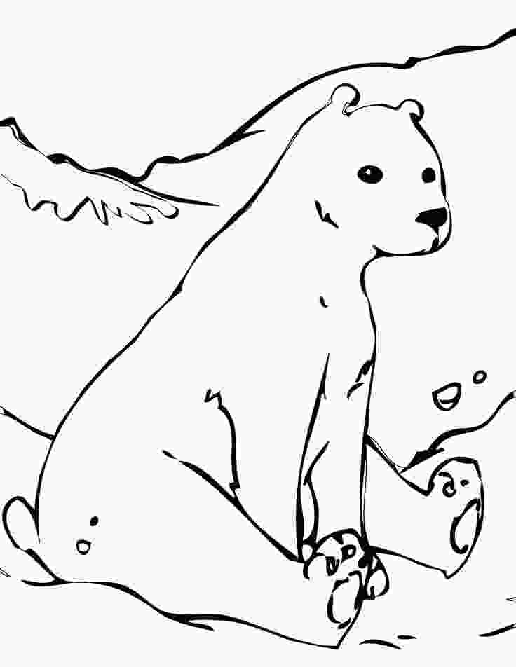 polar bear coloring pictures 19 best images about polar bear pattern on pinterest