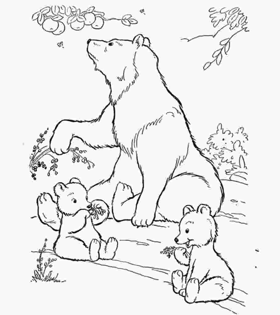 polar bear printable coloring pages top 10 free printable polar bear coloring pages online