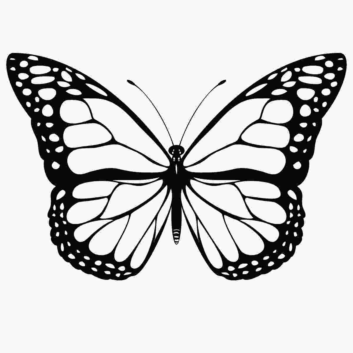 printable butterfly coloring page free printable butterfly coloring pages for kids