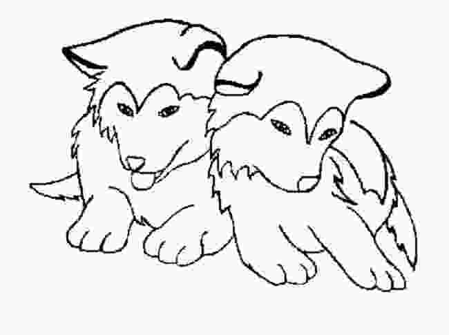 realistic cute dog coloring pages cute husky coloring pages coloring pages pinterest