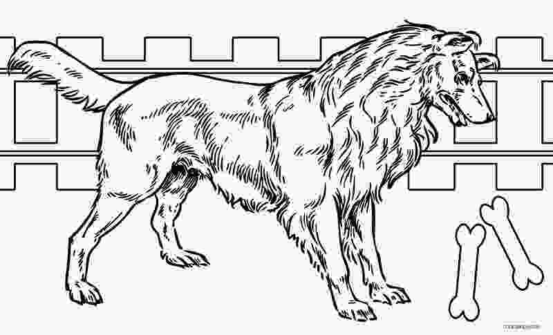 realistic cute dog coloring pages printable dog coloring pages for kids cool2bkids