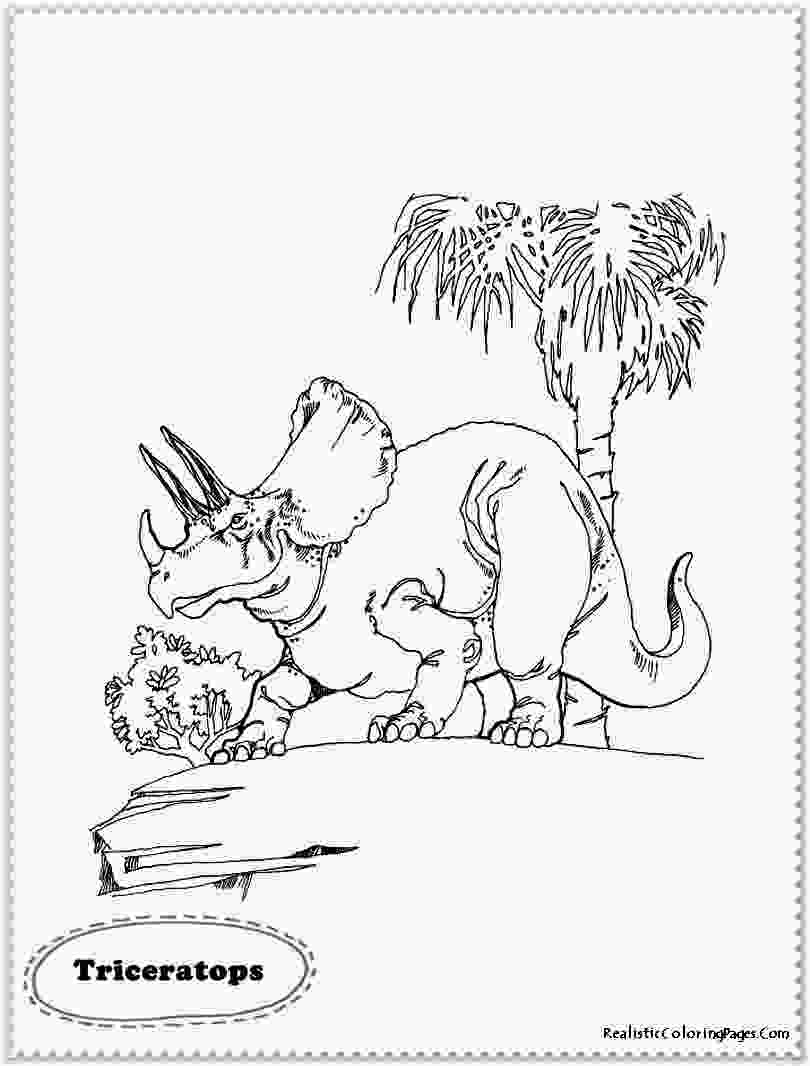 realistic dinosaur coloring pages realistic dinosaur coloring pages realistic coloring pages