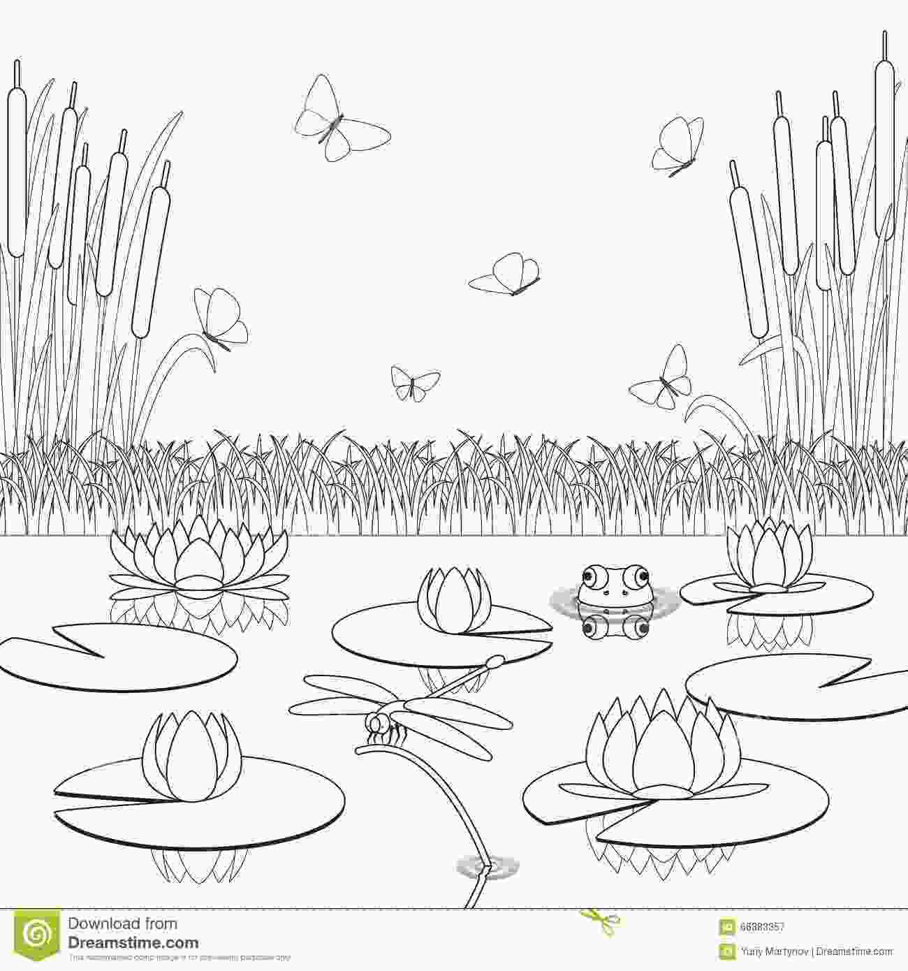 swamp coloring pages cypress swamp pages coloring pages
