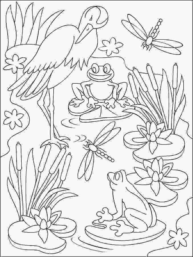 swamp coloring pages page with black and white illustration of swamp for