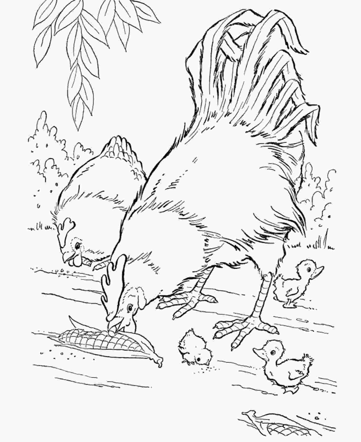 animal coloring pictures free printable farm animal coloring pages for kids