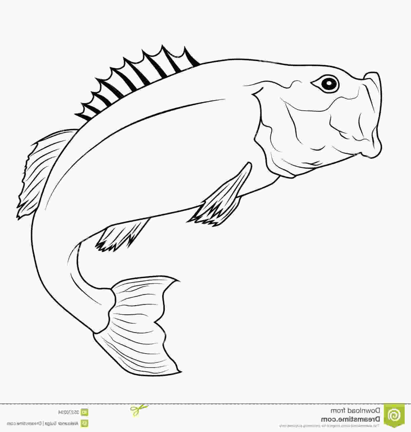 bass fish outline stock images jumping fish bass outline illustration image