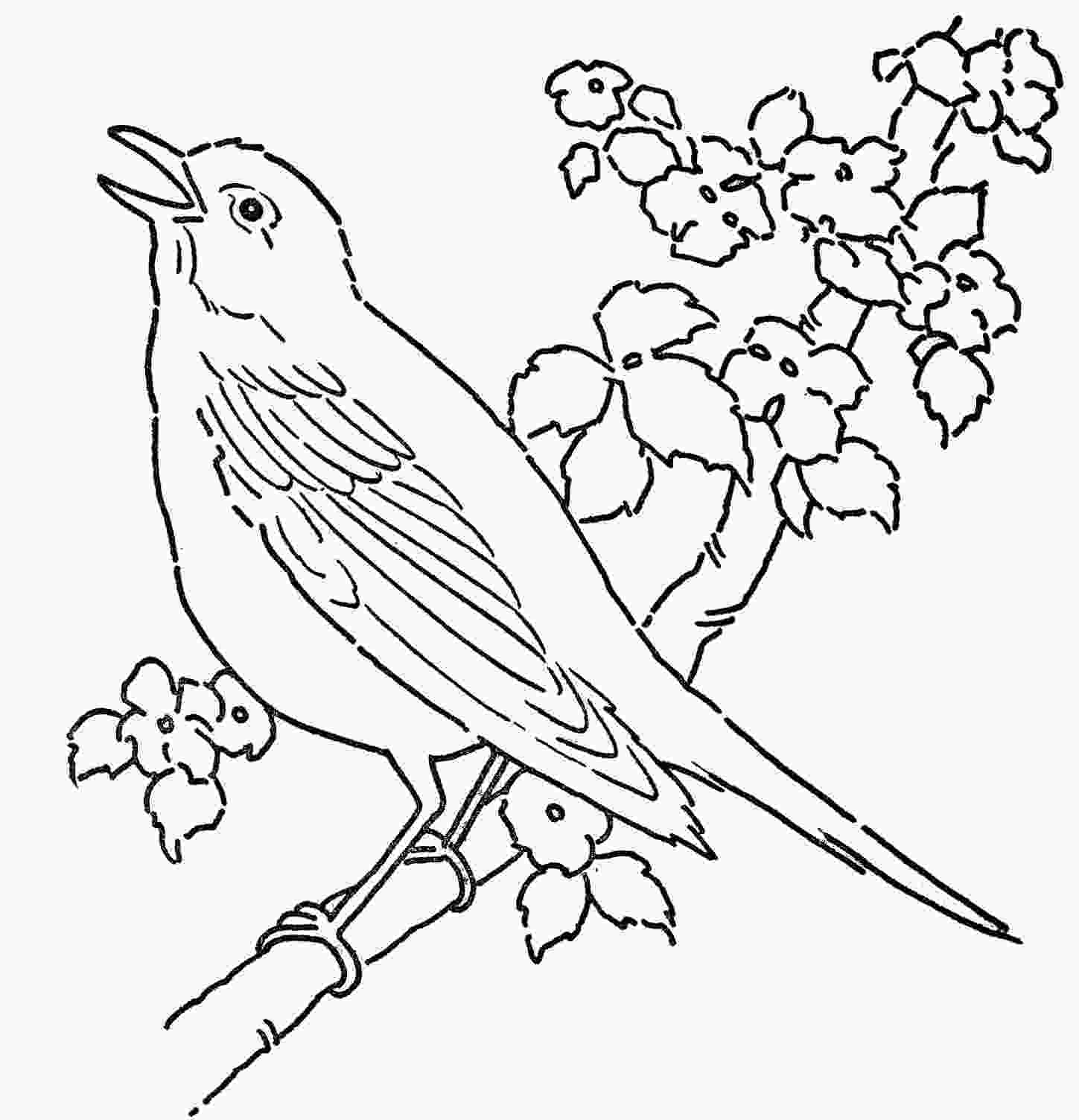 bird printable coloring pages bird coloring pages to download and print for free