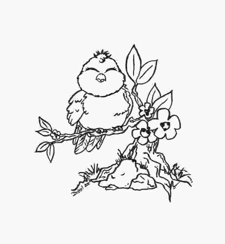 bird printable coloring pages cute bird flowers branch adult coloring pages