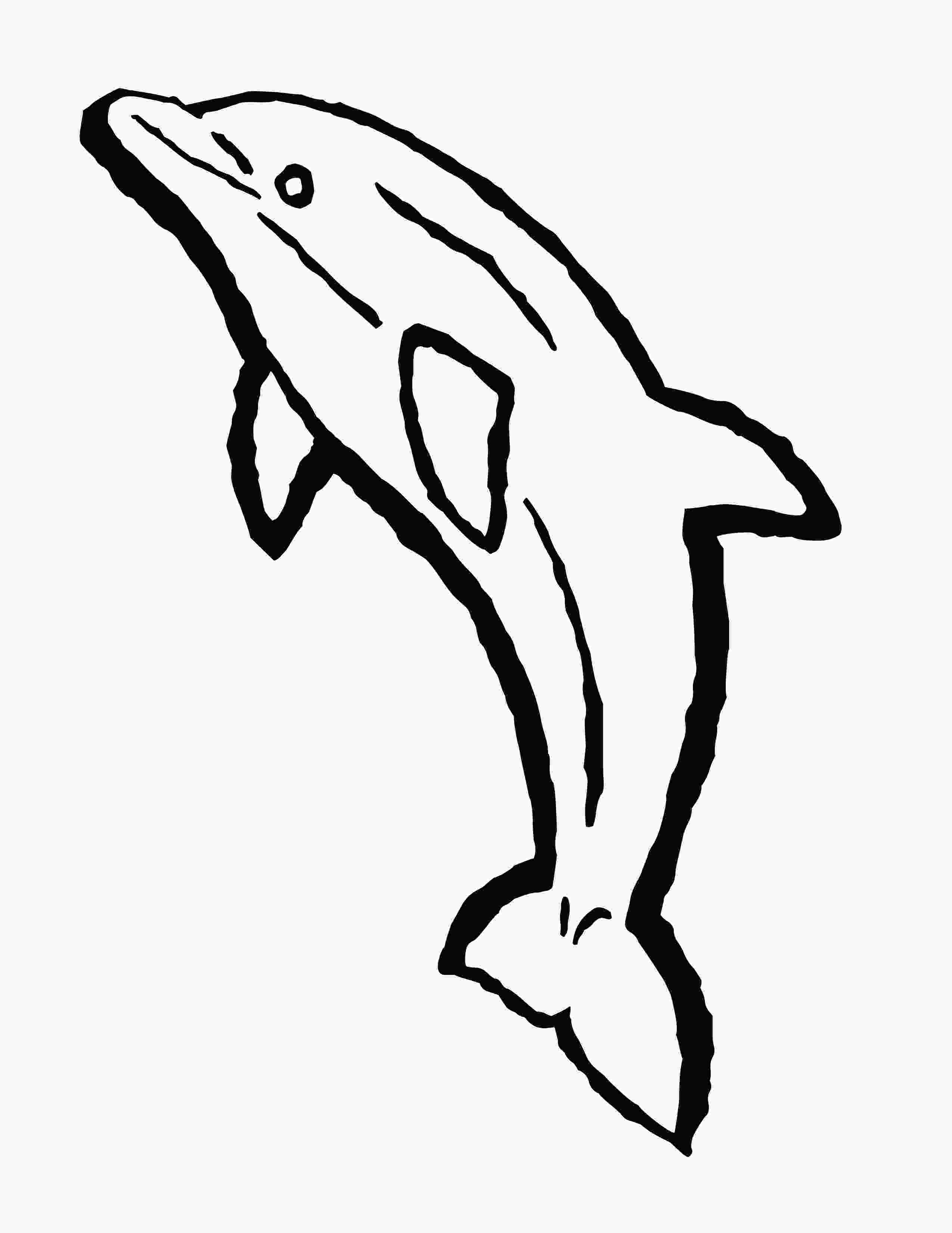 bottlenose dolphin pictures printable bottlenose dolphin coloring pages download free