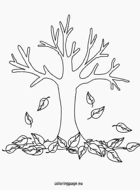 coloring clipart black and white tree autumn fall tree coloring page