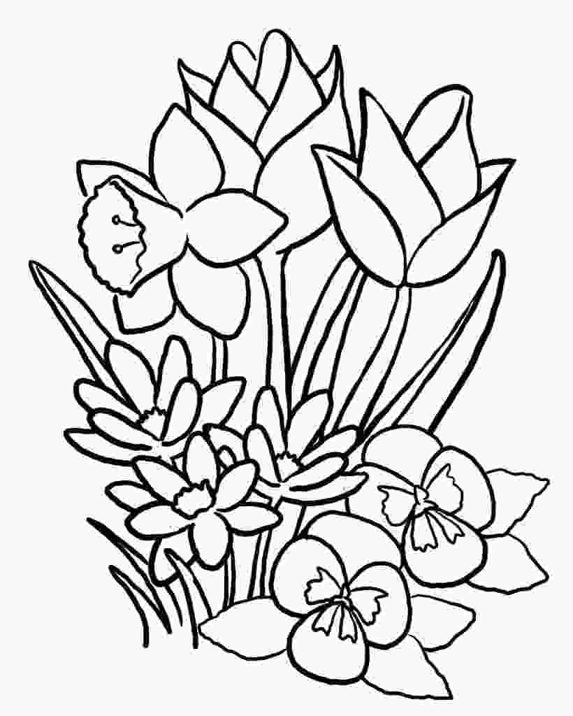 colouring pictures flowers free printable flower coloring pages for kids best