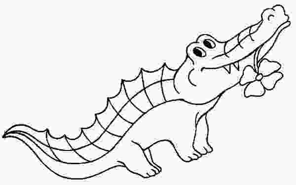 crocodile coloring free alligator pictures for kids download free clip art