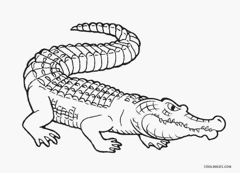 crocodile coloring free printable alligator coloring pages for kids cool2bkids