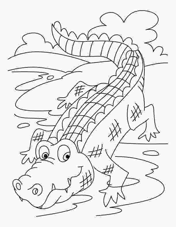 crocodile coloring free printable crocodile coloring pages for kids 2