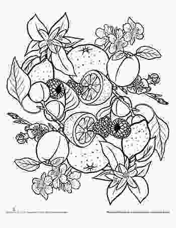 fruit mandala coloring pages 48 best fruit and veggie coloring pages images on pinterest