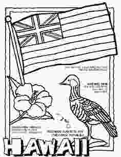 hawaii flag coloring page 1000 images about hawaii school project on pinterest
