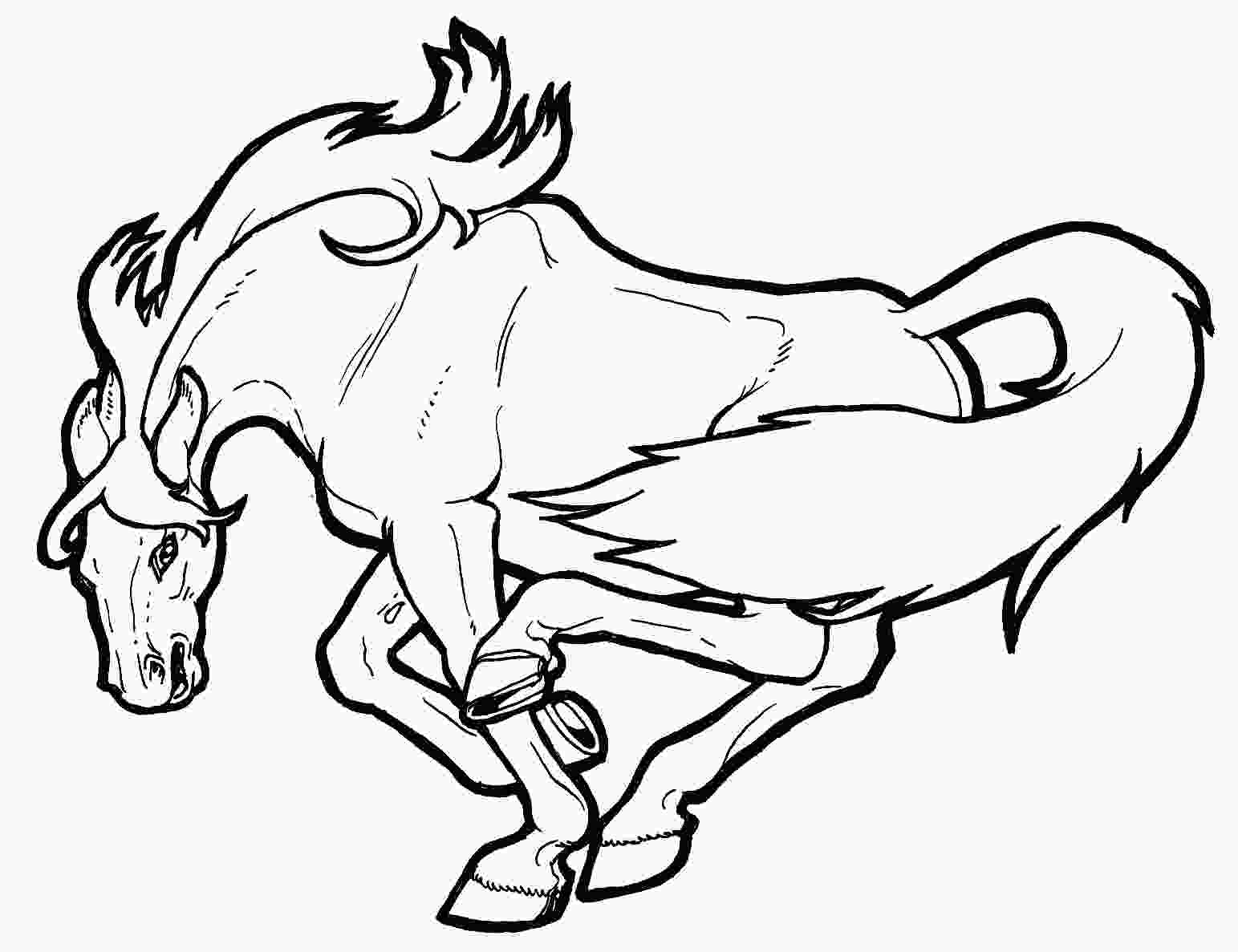 horse pictures coloring pages coloring pages of horses printable free coloring sheets
