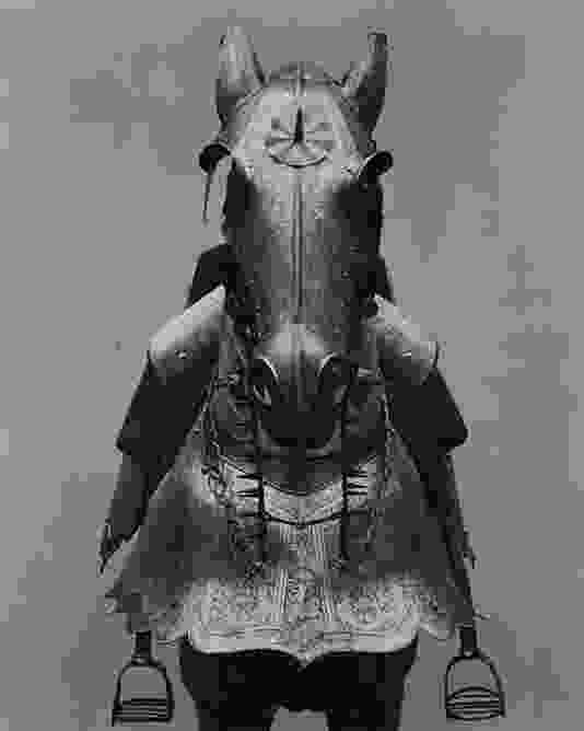 knight on a horse 126 best 16th century armour images on pinterest armors