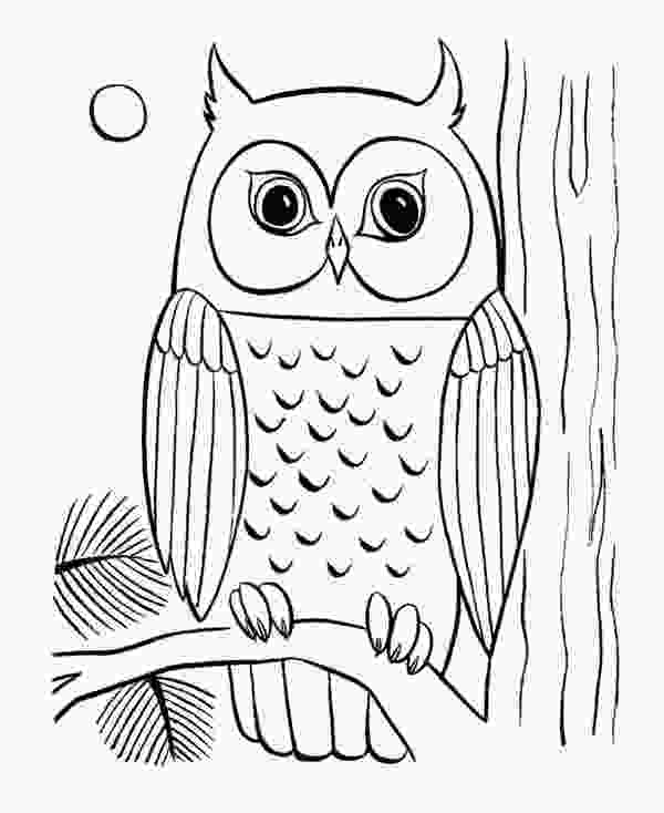 owl printable coloring pages coloring pages of owls to print owl coloring page 29