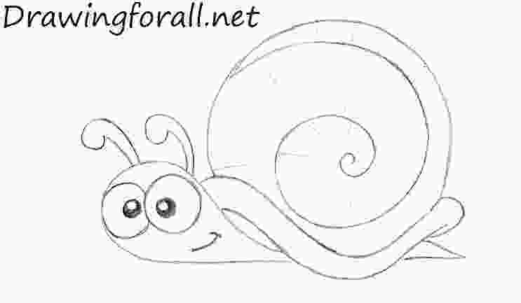 snail drawings how to draw a cartoon snail drawingforallnet 1