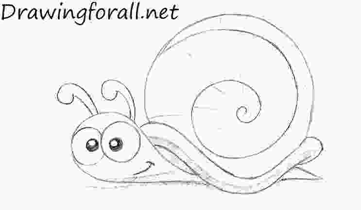 snail drawings how to draw a cartoon snail drawingforallnet