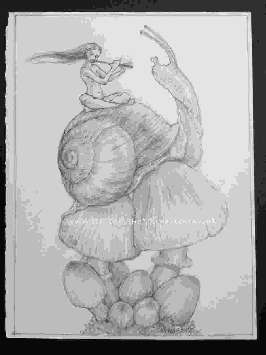 snail drawings snail and fae by renae taylor original drawing