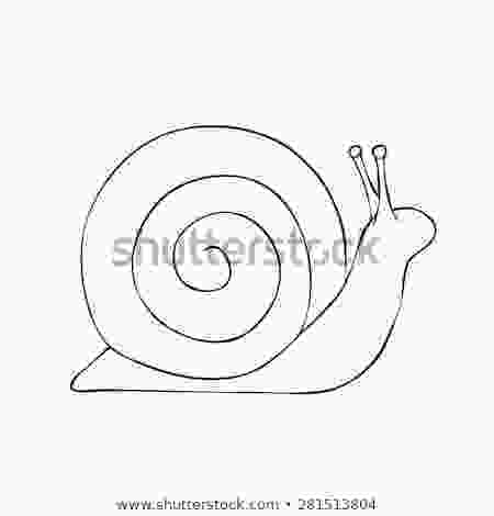 snail drawings snail drawn outline vector stock vector royalty free
