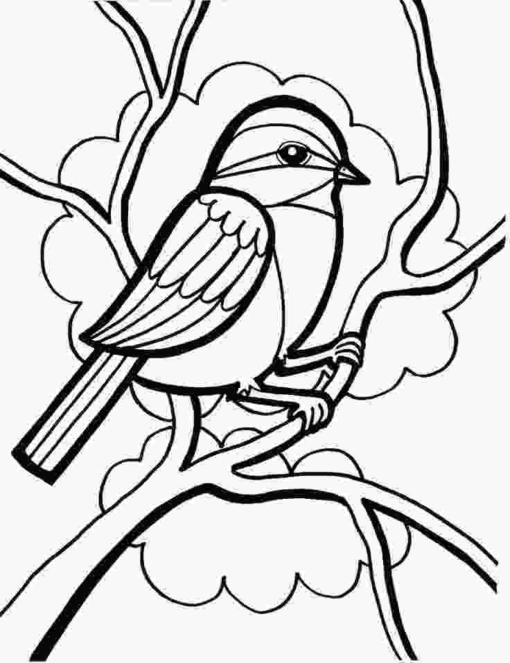 sparrow coloring page sparrow coloring pages coloring home