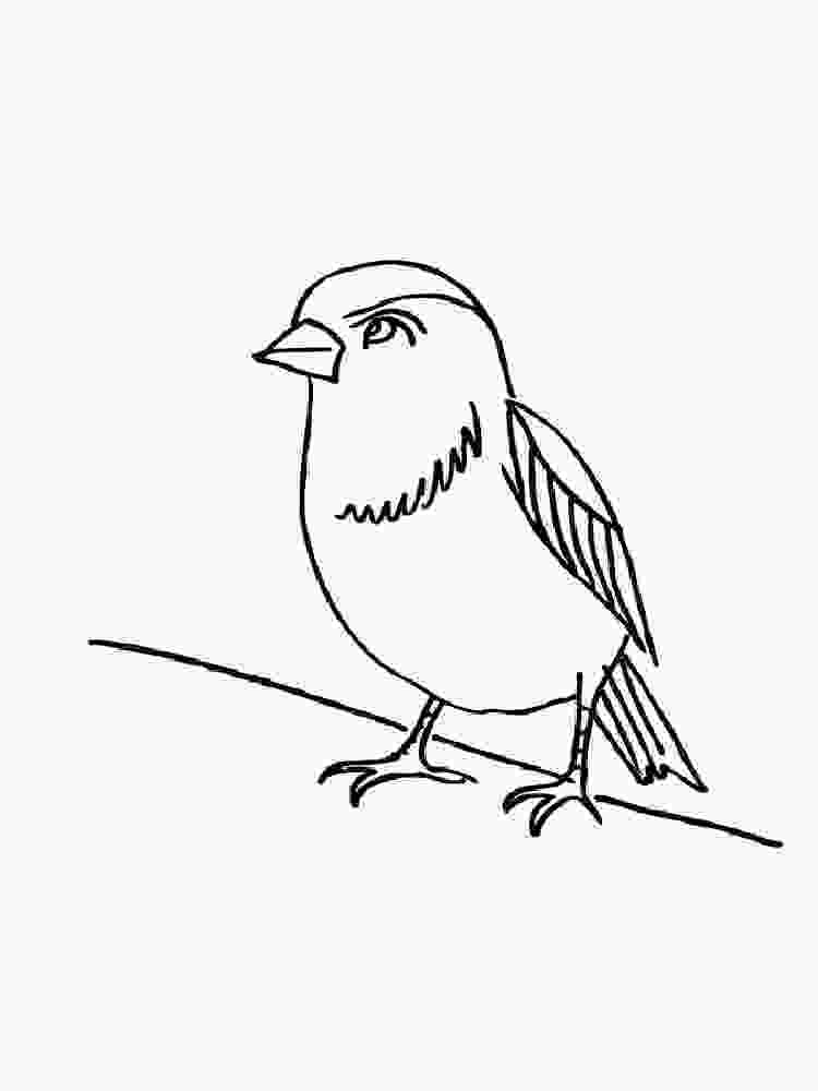 sparrow coloring page sparrow coloring pages download and print sparrow 1