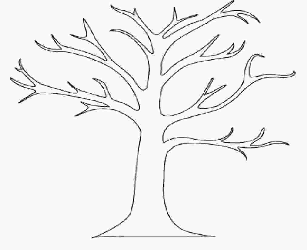 tree outline coloring page tree coloring pages tree coloring pages no leaves kids